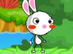 Zajac[1]
