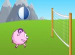 Volleybol247[1]