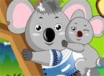Koala18[1]