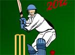 IndijskajaLigaBejsbola[1]
