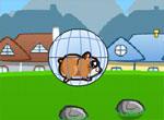 IgraHamsterball[1]